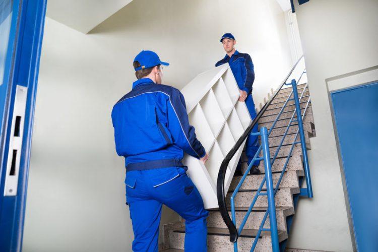 hire removal company