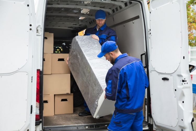 removals vs man and van