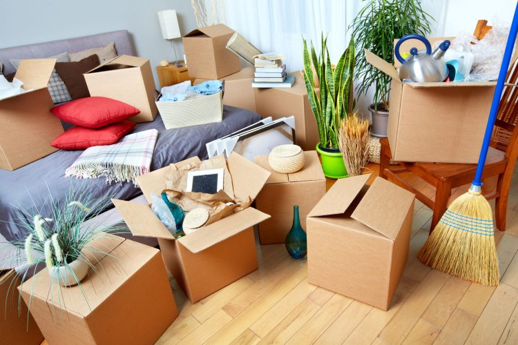 belongings organised for moving