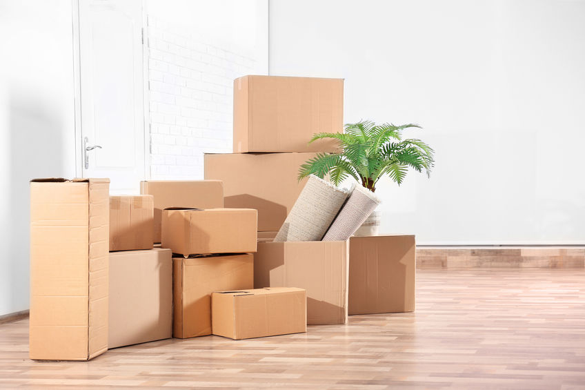 office removals